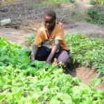 Orphaned boy tending to his garden