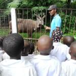 Excursion to the Kinshasa zoo