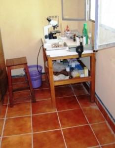 5.8_Tiled mini lab