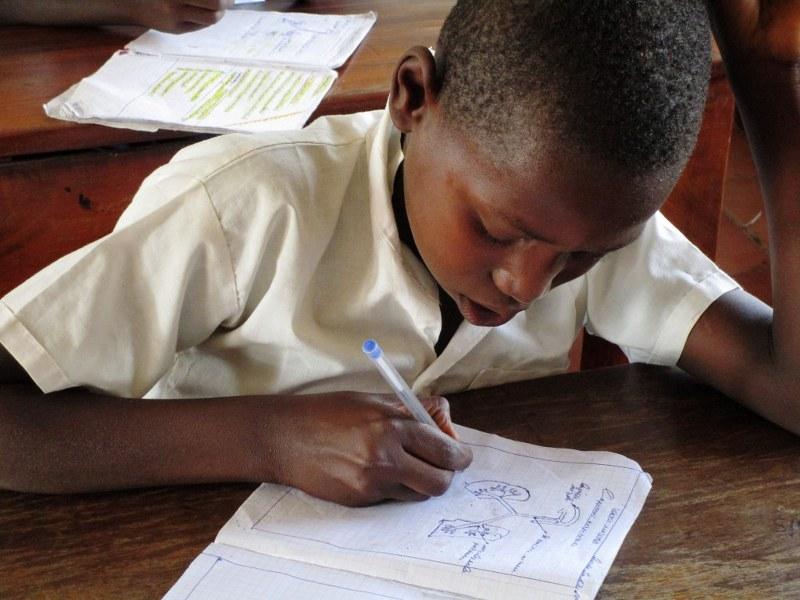 A studious boy